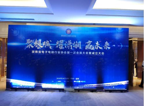 湖南凡亿智邦共筑湖南省电子电路行业协会起航