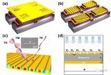 面向红外偏振成像的多功能超材料吸收体的反向设计