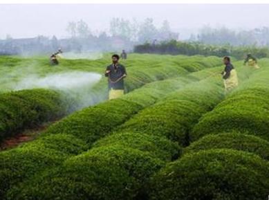 物联网技术将改变农业领域的各个方面