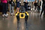 牛津大學哲學家 NickBostrom:人工智能...