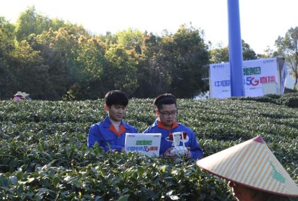 浙江电信利用5G网络实现了春茶采摘活动现场直播