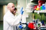 利用生物来制作商品,合成生物学也许将是制造业的未来