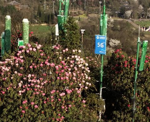 中兴通讯携手贵州移动打造了贵州省内首个5G+5A...