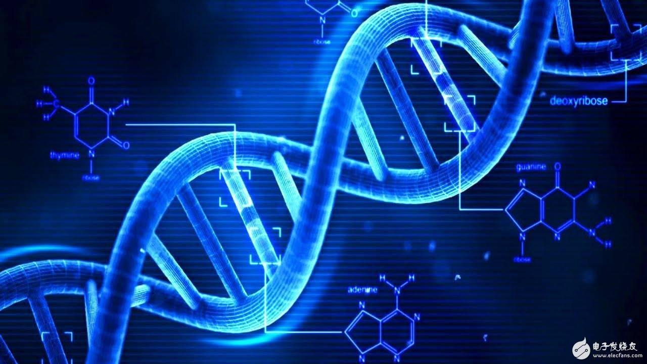 微软公布自动化 DNA存储和检索系统,一克DNA就能存储 215PB数据2000年