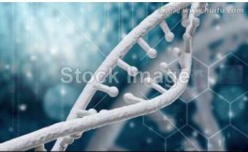 DNA场效应管传感器制备方法解析