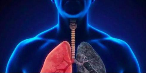AI医学影像是医疗领域落地最快的一个方向