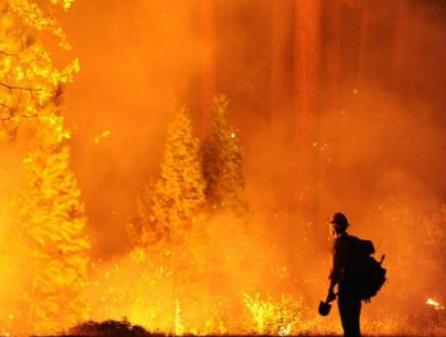 NASA和美国森林管理部门正在使用图像传感器来获取野火图像