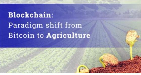 区块链将是解决食品供应链和农业部门困扰的最佳方案