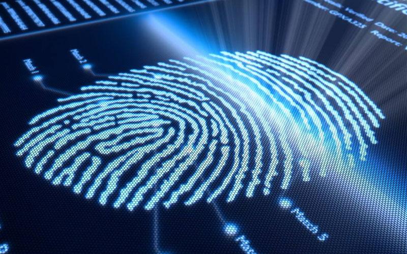 2019年,光學式屏下指紋識別方案成主流