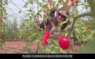 ADI公司利用作物監測和區塊鏈技術監控農村作物生...