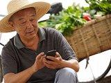 日本农民老龄化问题日趋严重,智慧农业生产初创企业在日本越来越多