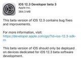 苹果向开发人员推送iOS12.3beta3更新 国行版上滑动画将回归
