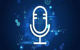 Voicebot:2019年车载语音助理报告