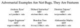 对抗样本真的是bug吗?对抗样本不是Bug, 它们是特征