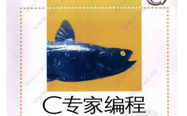 C专家编程PDF电子书免费下载