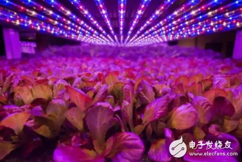 植物照明的能耗不断扩大,对传统农业照明灯具技术也...