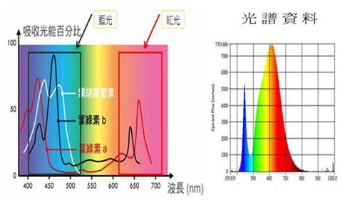 LED植物灯光谱的研究及应用