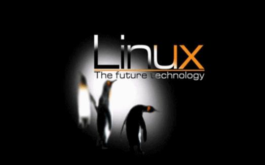 Linux学习教程之如何进行开发环境的搭建