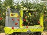 新一代自动番茄采摘车 多用途GRoW触发新需求