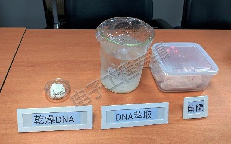 制作DNA光电组件可由杀鱼下脚料?
