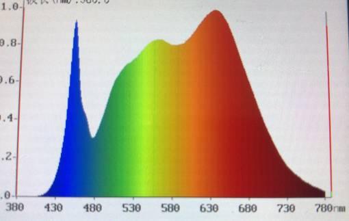 关于LED灯对眼睛的伤害