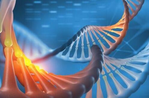 区块链技术正在推动基因组数据行业的发展