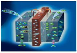 简述质子交换膜燃料电池所具有的特点