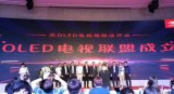 線上渠道發力,京東引領構建OLED電視聯盟