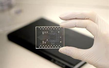加速拓展磁传感器芯片市场 意瑞半导体获数千万pre A融资