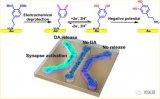 微流控 | 利用芯片电化学模拟突触前膜构建可释放多巴胺的金表面结构