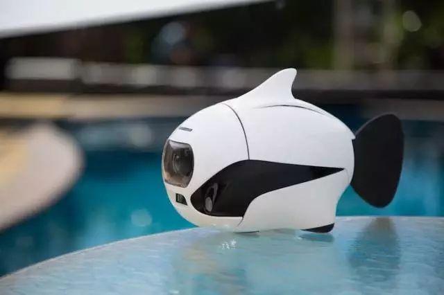 宠物鱼外形的水下摄像头实在Q萌可爱