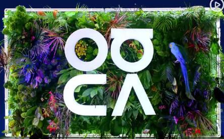 华为nova 5即将面世采用了全新的logo设计
