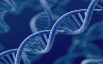 华为创新2.0重点研究未来技术 光计算和DNA存...