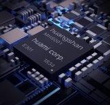 RISC-V崛起、开源破局,中国芯片困境可解?