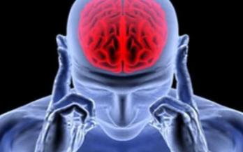 可否將存儲技術運用于人的大腦