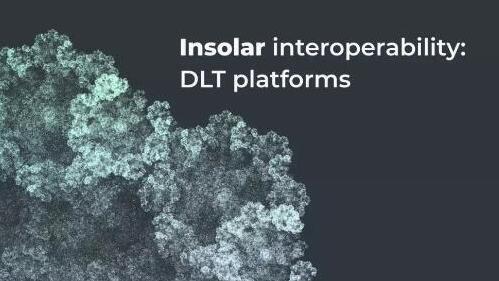 Insolar区块链平台可以与哪些技术进行互操作性