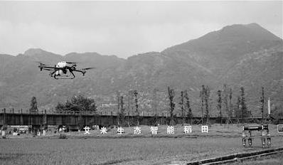 5G智慧农业上线 机器人巡田无人机喷洒