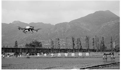 机器人巡田和无人机喷洒两者有联系吗