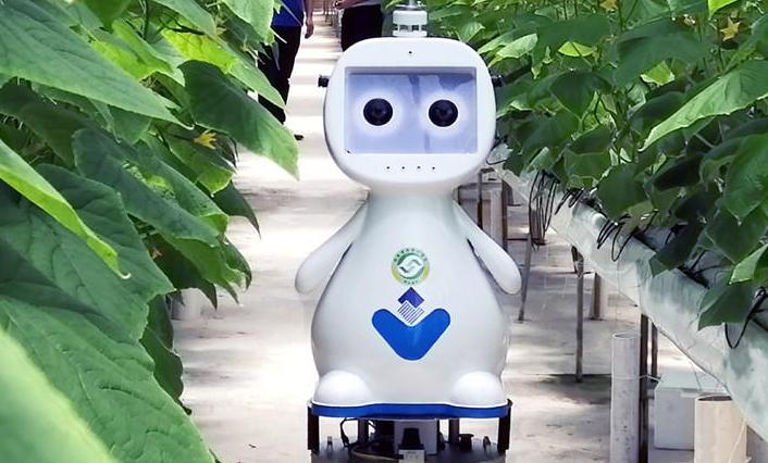 你見過人工智能農業機器人嗎