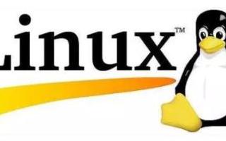 感受开源之美共享Linux的安全与便捷