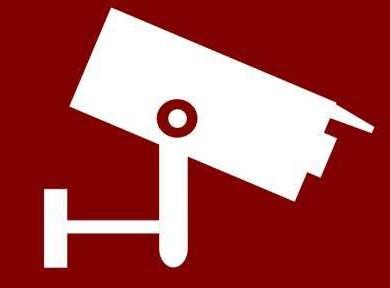 国内安防品牌向国际市场发起冲击