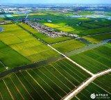 物联网在农业上的应用及未来发展趋势