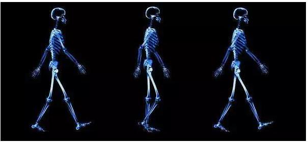 当人工智能知道你身体的秘密你会怎样想