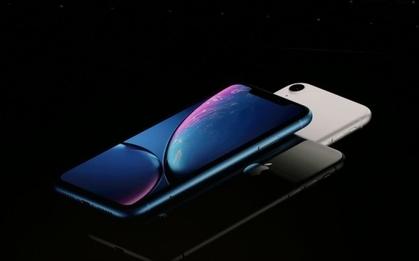 新款iPhone天线传混合设计软板会升级成4层板吗