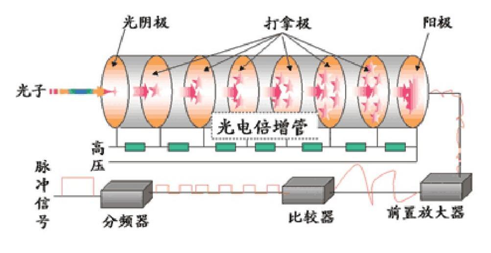 光电倍增管的工作原理