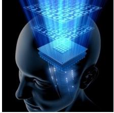 """澳科研团队用新算法帮助""""机器学习"""""""