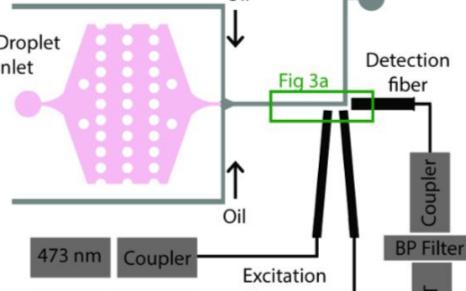关于光纤嵌入式微流控芯片的制作过程