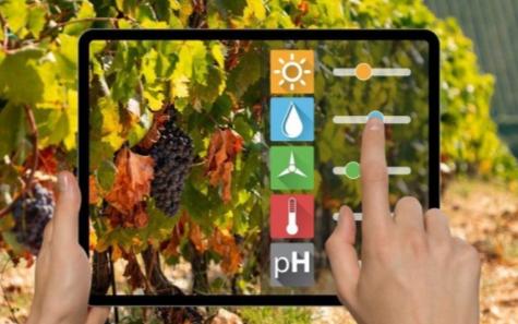 人工智能也将使得酿酒业发生改变
