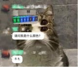 """""""史上最严""""垃圾分类措施的《上海市生活垃圾管理条..."""