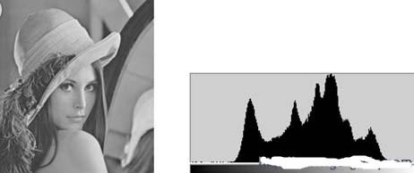 如何用FPGA的Block RAM性能实现HDTV视频增强算法中灰度直方图统计